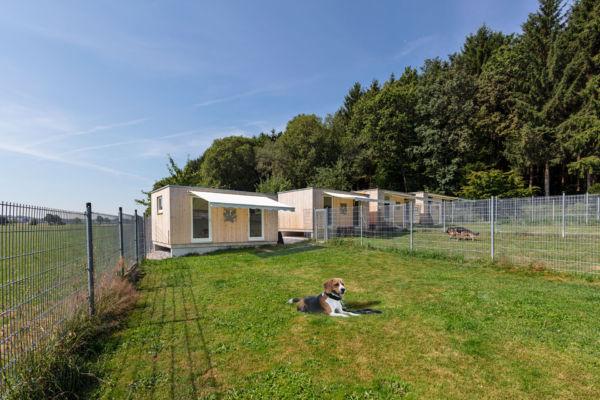 Modularer Holzbau, Hundepension, Hundehotel, Krumbach